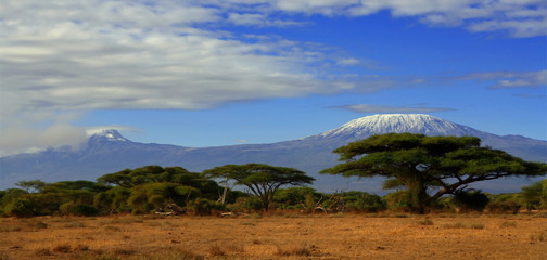 Kilimanjaro Tanzania snow capped under cloudy blue skies captured whist on safari in Africa Kenya.