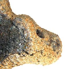 pierre volcanique : croco, phoque ou otarie ?