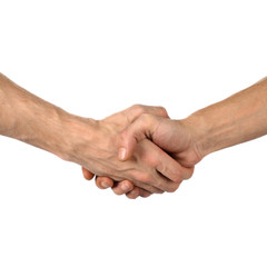 hand shake on white