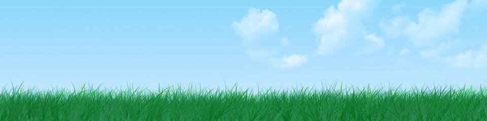 Grass banner