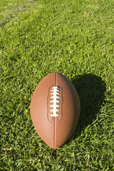 Foot Ball and grass