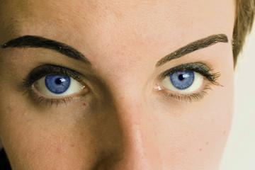 yeux bleus fixés