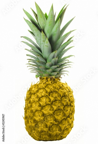 Golgende Ananas Golden Pineapple Stock Photo And Royalty