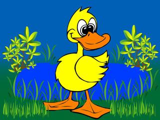 Illustration einer Ente - Vector