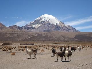 Sajama, volcan d'Amérique latine.