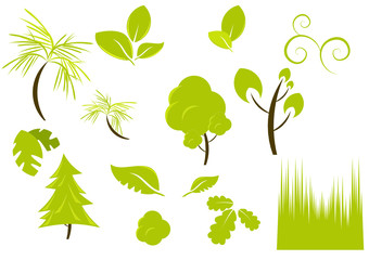 ökologie baum natur