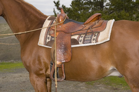 Western saddle on mount ready to go in closeup
