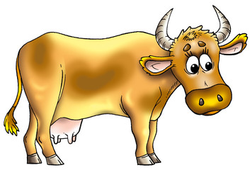 The cow  01