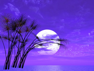 Water plants (papyrus) on a sea sunset  background  -  3D scene.