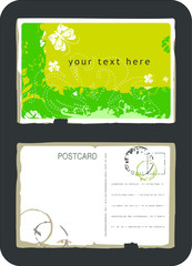 Vintage green swirls and butterfly postcard front and back