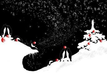 Christmas for penguin