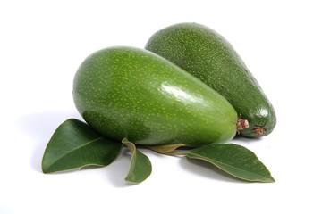 Avocado Pears on White Background