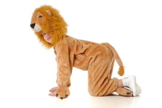 The boy in a fancy dress of a lion
