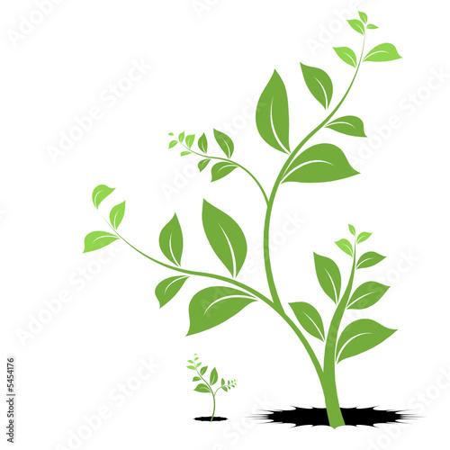 plante vecteur jeune pousse symbole de vie et de naissance fichier vectoriel libre de droits. Black Bedroom Furniture Sets. Home Design Ideas