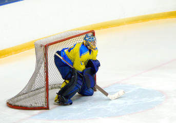 The hockey player protects a gate