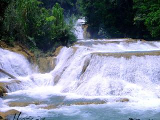 mexique agua azul aguas claras jungle amérique centrale