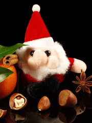 Weihnachten / Nüsse