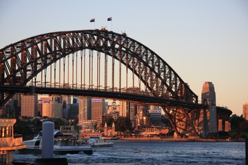 Sidney harbour bridge evening