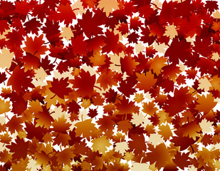 Autumn fall background with red leaves