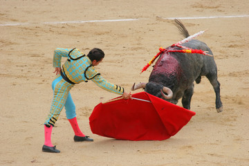photo taken during corrida in madrid las ventas