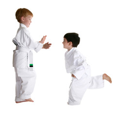 Martial arts sparring parternes.  Over white.  Clipping path.