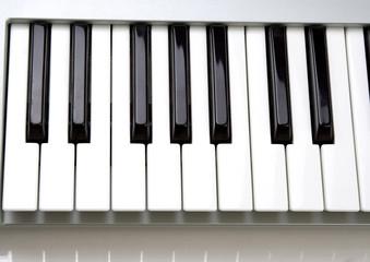 Keys on a keyboard (piano)