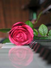 Music Of Love1