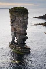 Wall Mural - orkney seastack