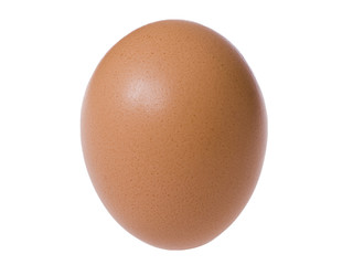 Standing brown egg isolated over the white background