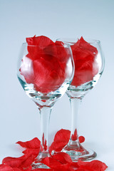 Wines Glasses Filled with Rose Pedals