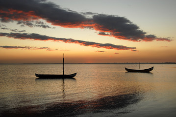 small moliceiro portuguese boats on the sunset