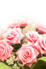 Wedding and Valentine concept with many pink roses