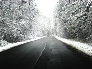 Winter road with some fog
