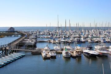 Photo sur Aluminium Algérie yachts in marina