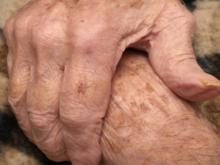 Old man's hard-working hands