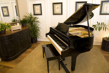 Grand piano in a modern luxury home.