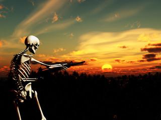 War Skeleton With Background