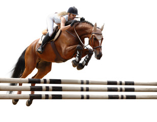 show jumping /stylized by oil painting/ - isolated on white