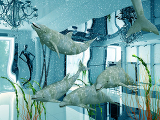 group of the dolphins in modern shop interior (3D)