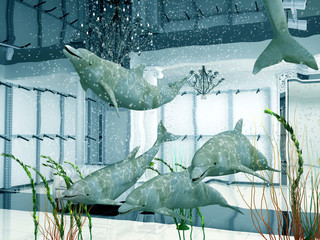 group of  dolphins in modern shop interior (3D)