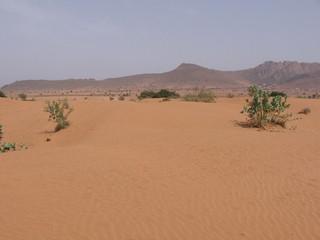 Moroccan Desert3