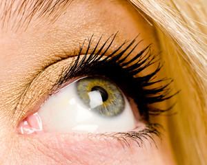 Blau grünes Auge von blonder Frau mit Wimperntusche