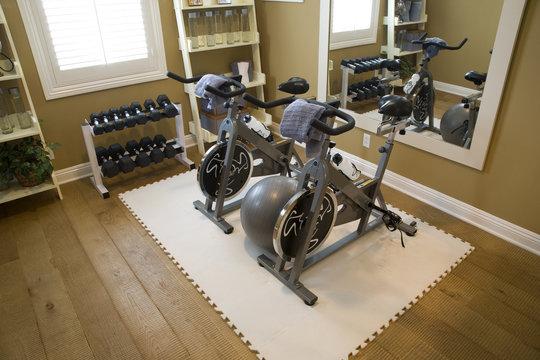 Luxury home fitness room