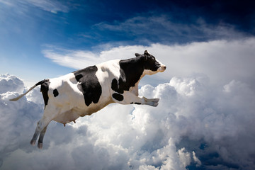 Wall Mural - A super cow flying over clouds