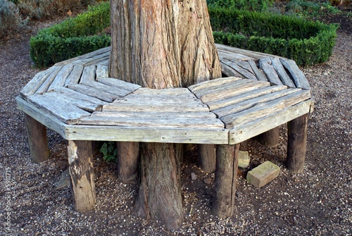 Wooden seat or bench around a tree trunk stock photo and for Benches that go around trees