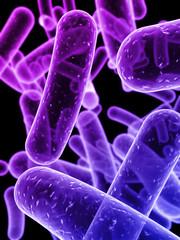 3d bakterien