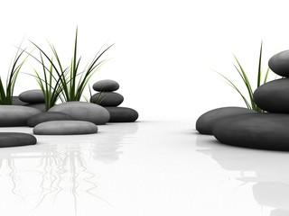 Fototapeta steine und gras