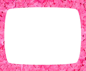 roses petals floral frame on a white background