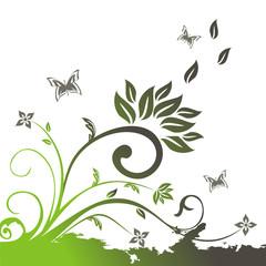 vector floral illustration