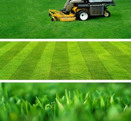 Photo sur Aluminium Vert lawn mowing